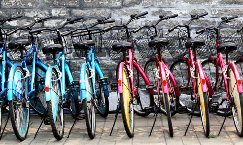 Colourful bikes in stands